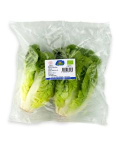 Mini Romaine Lettuce, 300g