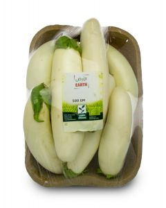 Earth - White Eggplant, long
