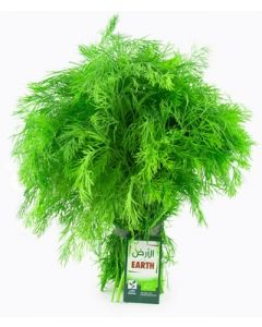 Earth - Dill Bunch, 100g