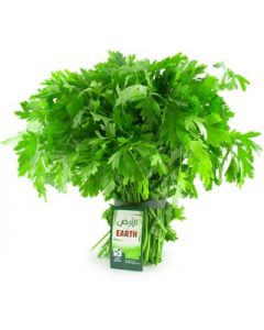 Earth - Parsley, 100g