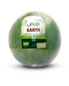 Earth - Watermelon