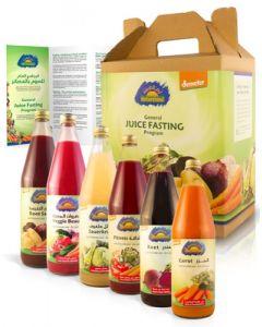 General Juice Fasting Program