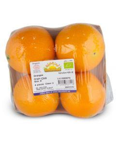 Oranges, Navelina, 500g