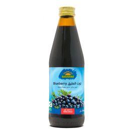Natureland Blueberry Juice 330ml