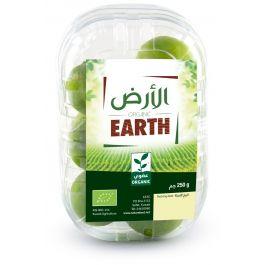 Earth - Limes