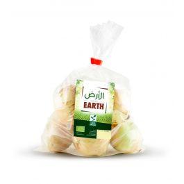 Earth - White Onions