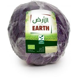 Earth - Red Cabbage