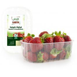 Earth - Strawberries