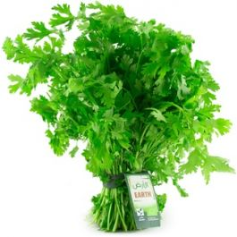 Earth - Coriander Bunch, 100g