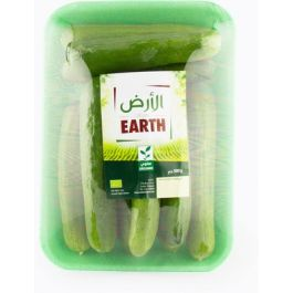 Earth - Cucumber Tray, 500g