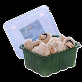 Mushrooms, white, 250g