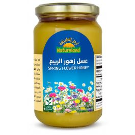 Natureland Spring Flower Honey 500g
