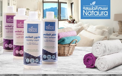 Toxic clean – Harmful household cleaning chemicals