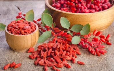 Goji Berry – A remarkable plant with a legend for longevity