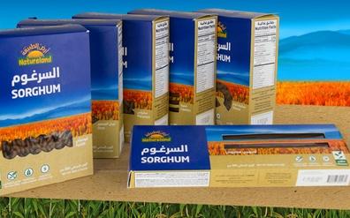 Sorghum Pasta Brochure